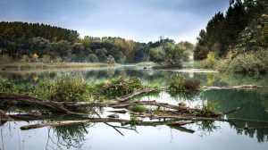 Programa de revitalização de bacias hidrográficas é lançado pelo governo