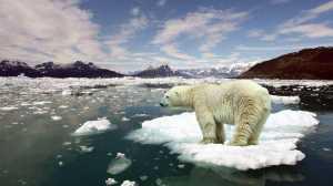 Negação das mudanças climáticas é um ponto de vista?