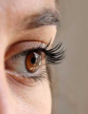 Células retinianas transplantadas de cadáveres podem curar a cegueira de milhões de pessoas