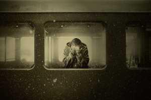Cientistas mostram como é a solidão no cérebro