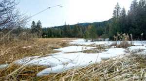 Secas de neve' aumentando no oeste dos EUA