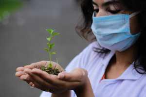 Você já parou para pensar como o meio ambiente e a saúde estão ligados?
