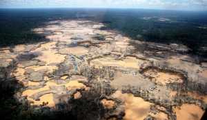 Ecocídio: Criminalizar destruição ambiental