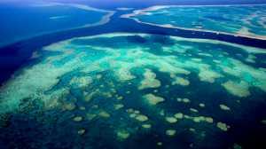 Oceano 'Zonas Mortas' estão liberando um dos piores gases de efeito estufa