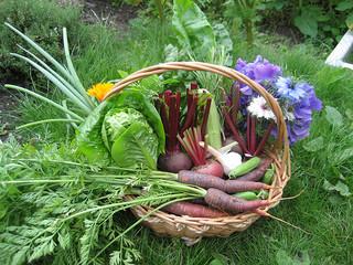Vegetables in baking – Part one: keeping it sweet