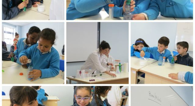 Science Expo Malta 2015