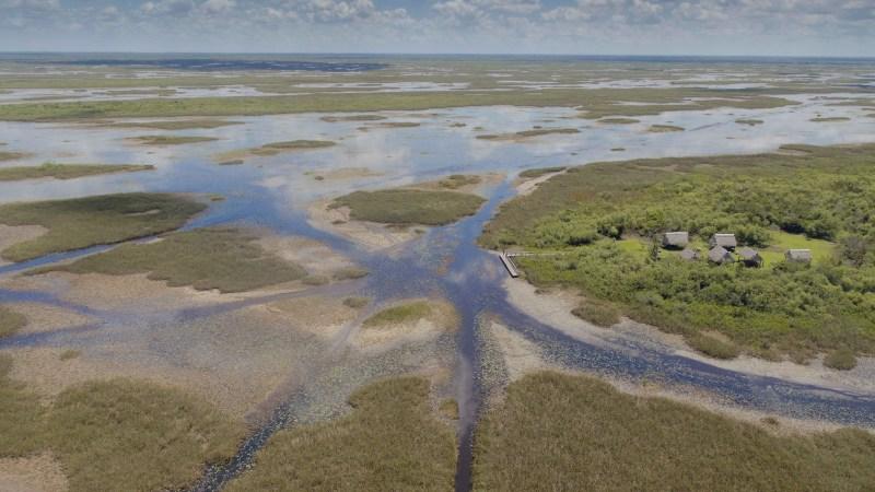 Natural World_Florida - America's Animal Paradise