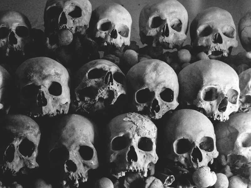 pile of human skulls