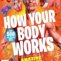 How Your Body Works - 3rd Edition 2021