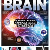 How It Works - Inside Your Brain - Second Edition, 2021