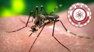 Dengue mini Symposium