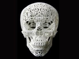 White-Skull-front