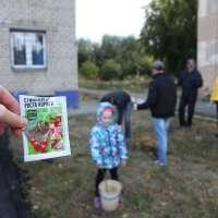 Специальный стимулятор для роста корней. Посадка деревьев в Челябинске - Тур Доброй Воли