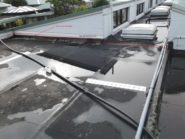 30 year old butynol rubber roof,