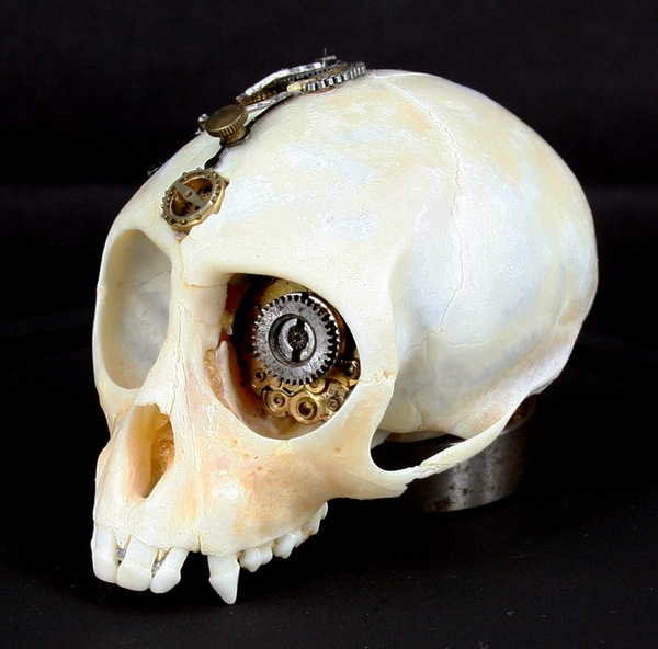 543381269294391 thumb1 Extreme Steampunk Beyond the Grave Terminal Techno Taxidermy