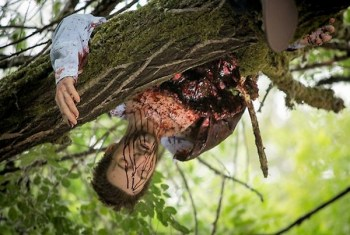 A victim whose stomach exploded hangs from a tree.