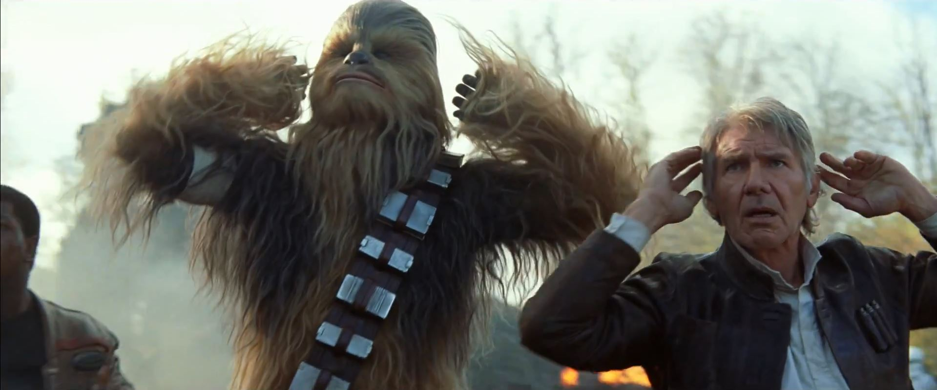 Chewbacca and Han Solo captured