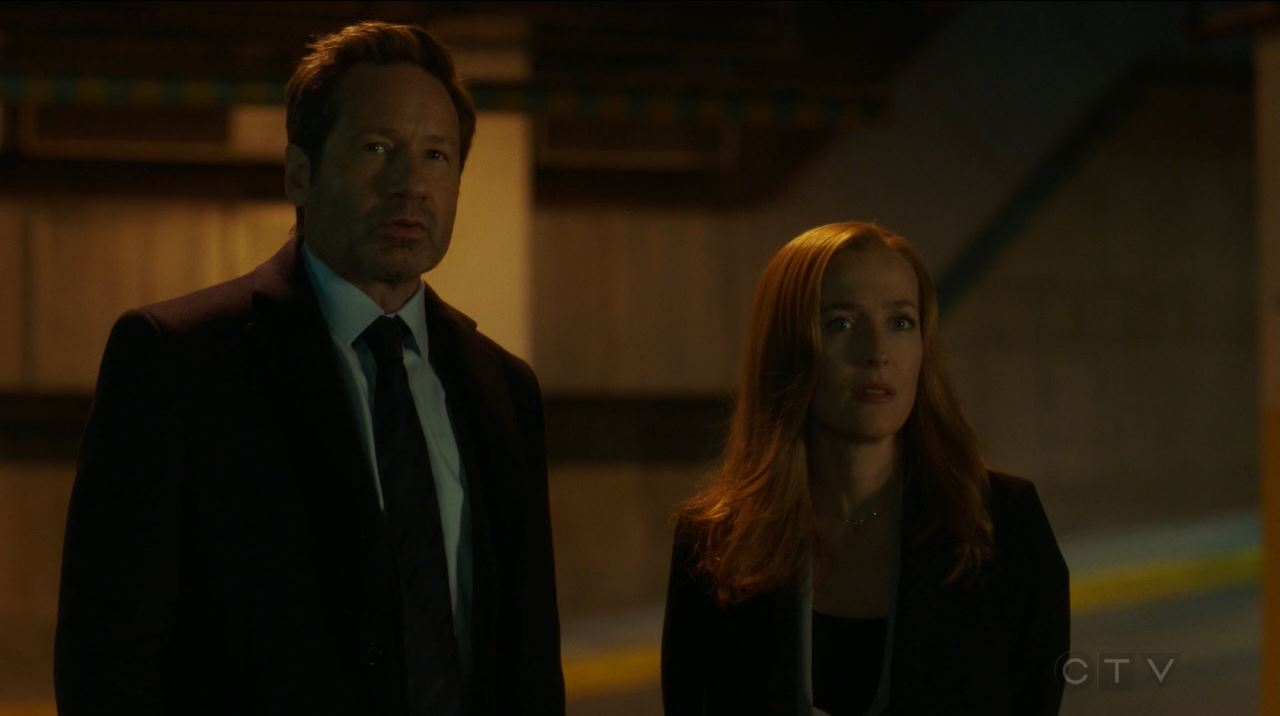 The X-Files S11E04 The Lost Art of Forehead Sweat - Dana and Mulder watch Reggie being taken away