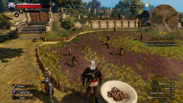 The Witcher 3 on Nintendo Switch countryside estate