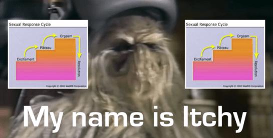 Wookie-Response-Cycle
