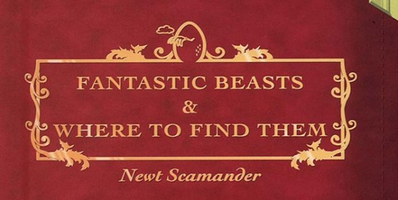 fantastic beasts and where to find them wide