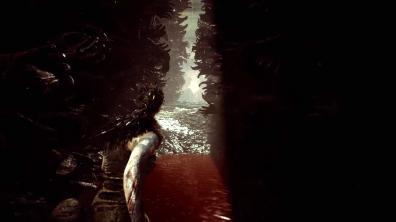 Hellblade Senuas Sacrifice (16)