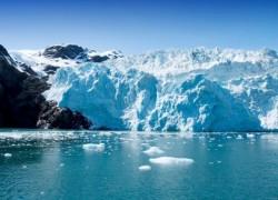 A polar ecosystem. Photo source: https://naturallyearthfriendly.com/environmentally-unfriendly-top-threats-to-the-arctic-ecosystem/