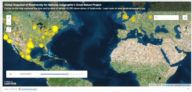 Map generated from the Great Nature Project. This is a view of one time point showing the areas where observations were recorded (yellow circles). Photo credit: https://greatnatureproject.org/events/global-snapshot-2015/