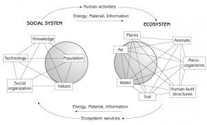 Image credit: Gerald Marten -https://www.gerrymarten.com/human-ecology/chapter01.html