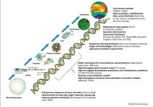 molecular to global
