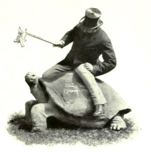 man on tortoise