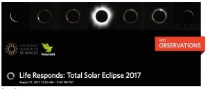 Logo of Life Responds project (http://www.inaturalist.org/projects/life-responds-total-solar-eclipse-2017/)