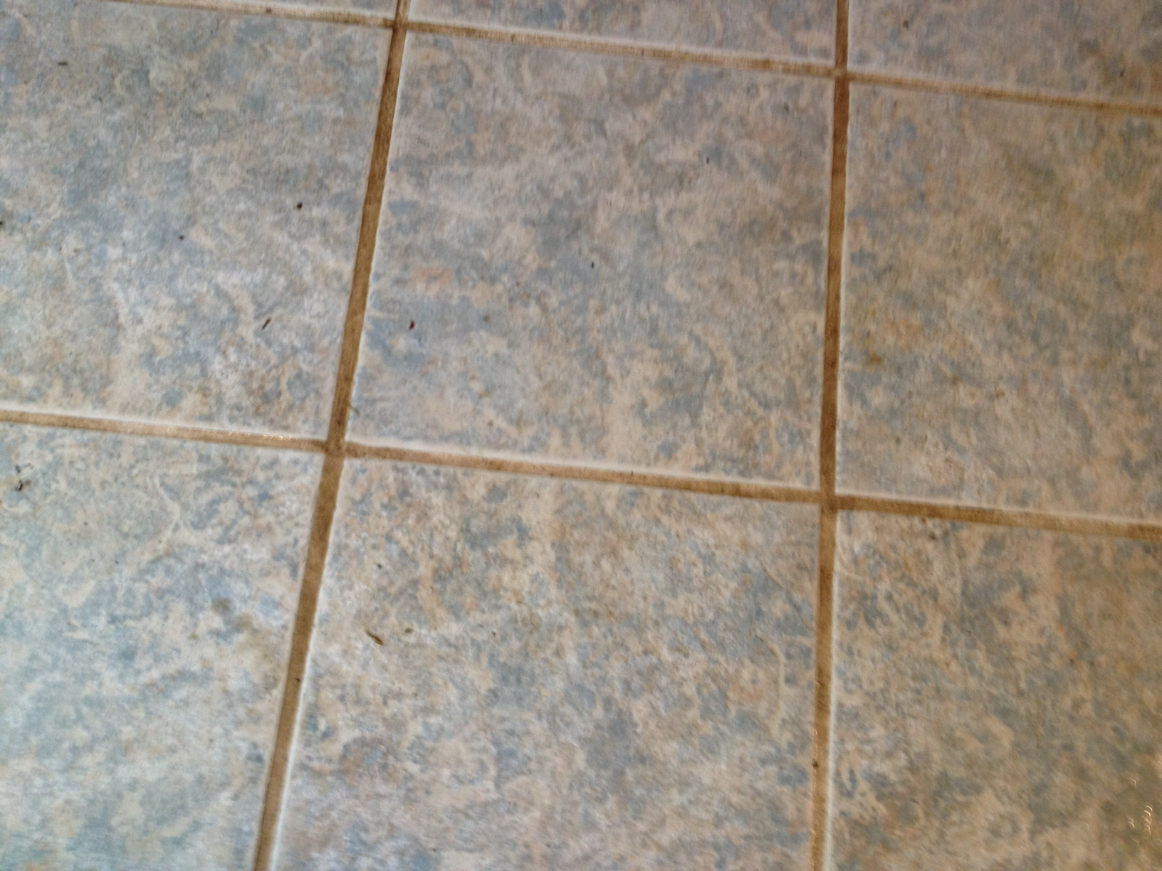 sci southern coast improvements llc cleaning grout