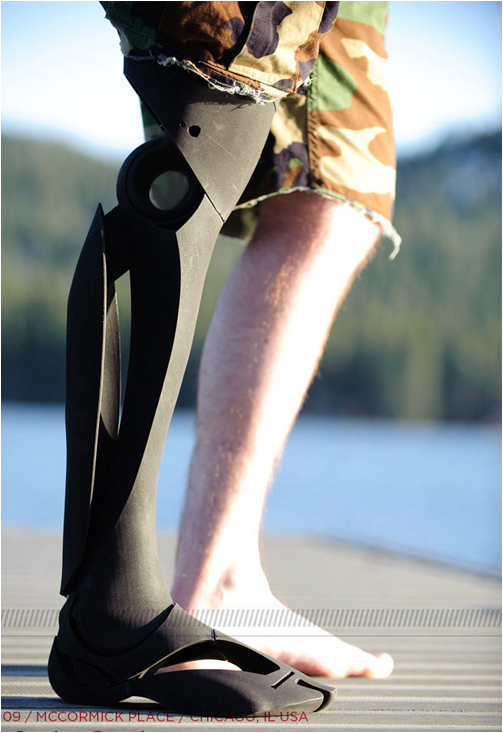 Artificial Limbs by Scott Stummit (2)