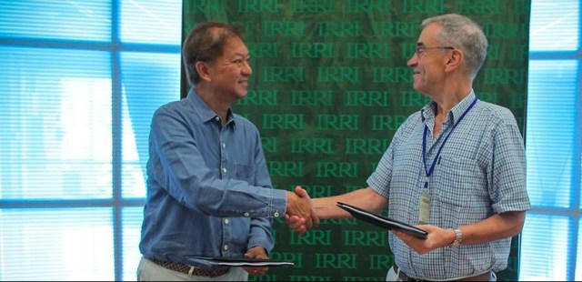 ormally signed by Dr Peter Brothers, IRRI Chief of Staff and representing IRRI's Director-General, and Mr Julio Sy,Jr., TCTI Chief Executive Officer, on July 30 at IRRI's Headquarters in Los Baños, Laguna