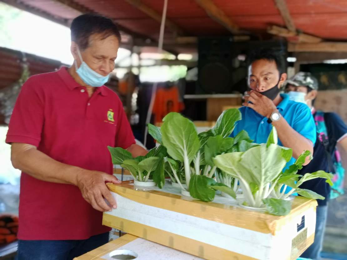 PCAARRD, a DOST agency promotes urban gardening.