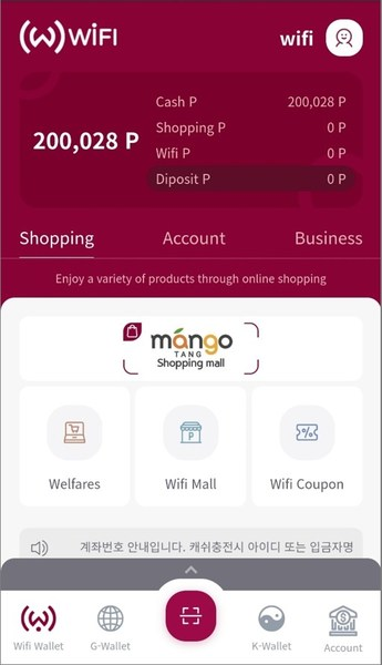 World Wifi Foundation Pay Wallet