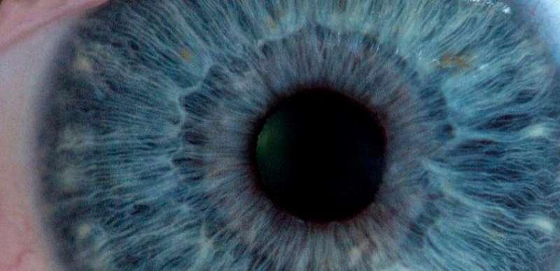 Image result for soul