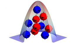 Bose-Einstein Condensate Comagnetometer
