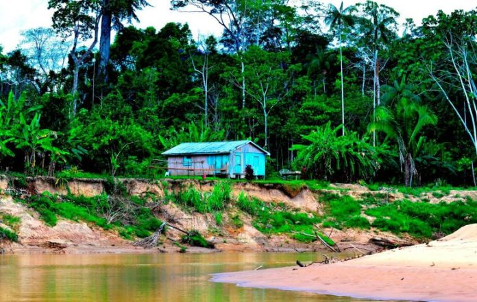Brazillian Amazonia