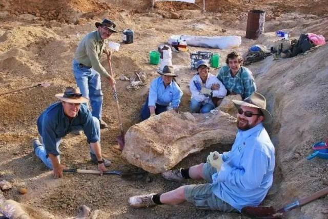 Team Excavating Dinosaur Bone