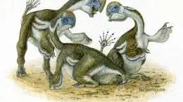 Three Oksoko Avarsan Dinosaurs