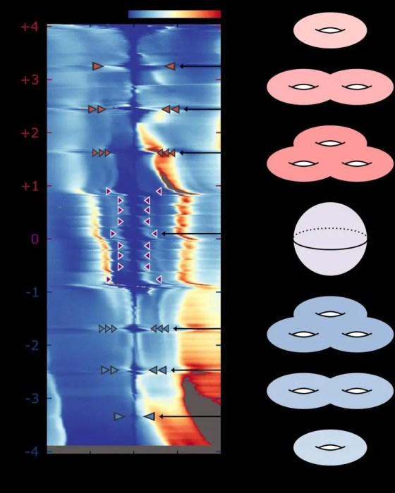 Topological quantum states