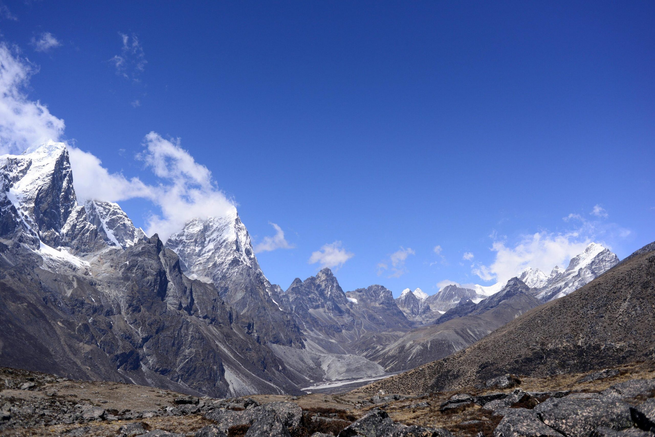 Plant Life Expanding Around Mount Everest And Across The
