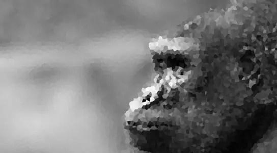 lowland-gorilla-grin-pxiel