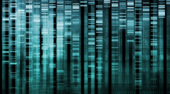 raw-genetic-code
