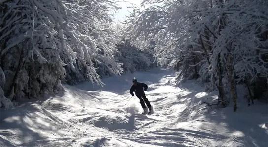 winter-skiing
