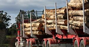 Logging Truck in Tasmania