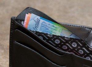 wallet money 2