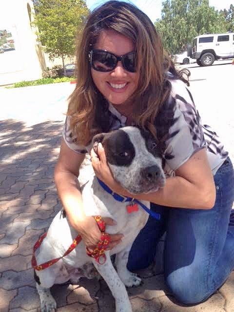 Jacqueline Rivera, president of the rescue Doggie Bonez, displays Banjo.